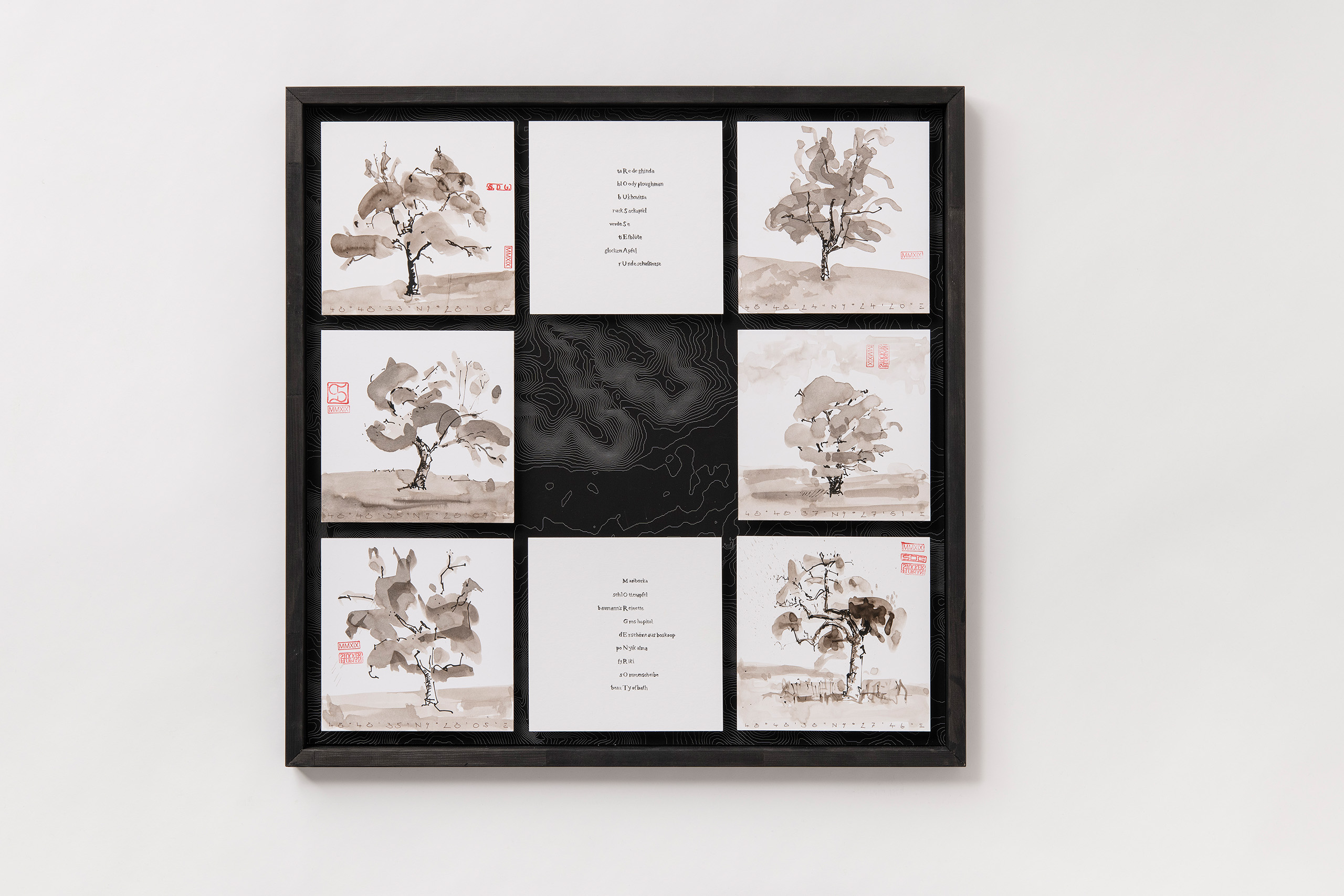 Florian Stocker, Wandernder Apfelhain 1 von 3, Tuschezeichnung mit Lavage auf Druckgraphik und Kalligraphiegedicht von Alec Finlay, 70 cm x 70 cm