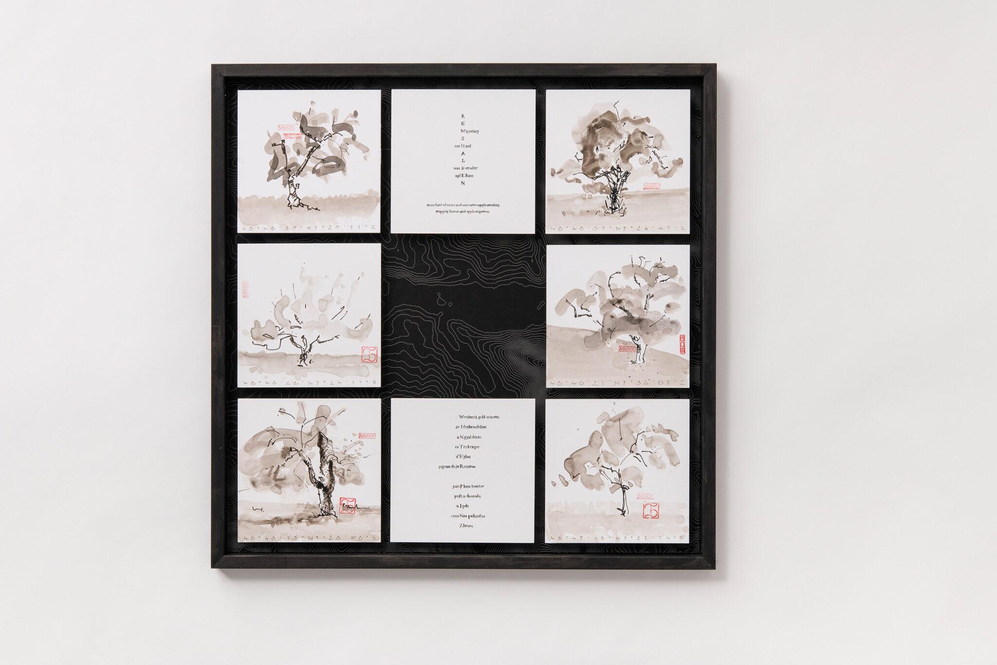 Florian Stocker, Wandernder Apfelhain 3 von 3, Tuschezeichnung mit Lavage auf Druckgraphik und Kalligraphiegedicht von Alec Finlay, 70 cm x 70 cm